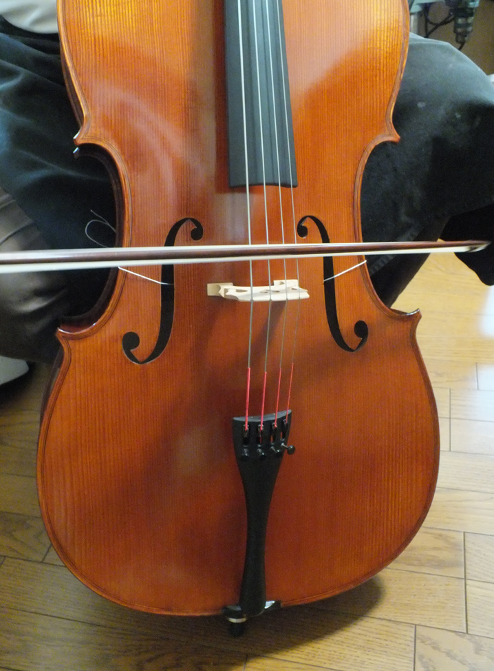 GLIGA Cello 2012年 gems Ⅰ- M L