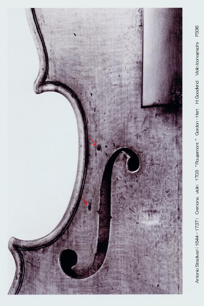 Antonio Stradivari  Violin 1703年 - 1 L