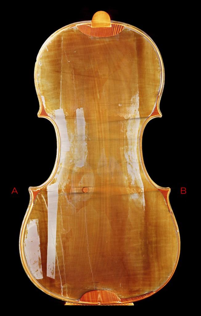 Violin back - C L